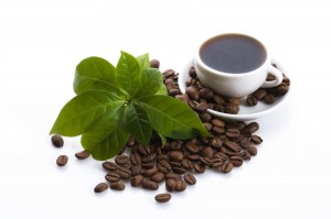 green cofee for weight loss